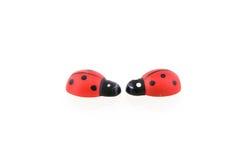 ladybirds 2 деревянные Стоковые Фото