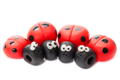 ladybirds Obraz Stock