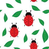LadyBirds background seamless texture Royalty Free Stock Photo