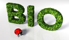 Ladybirds with bio text Stock Photos
