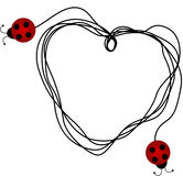Ladybirds creating a heart with a piece of string Royalty Free Stock Image