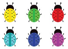 LadyBirds different colors Royalty Free Stock Images