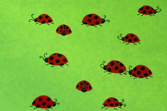 Ladybirds on green background Royalty Free Stock Images