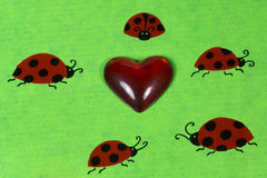 Ladybirds and heart Royalty Free Stock Photography