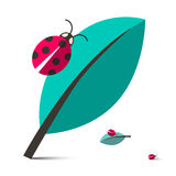 Ladybirds - Ladybugs on Leaf Vector Illustration Royalty Free Stock Images