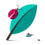 Ladybirds - Ladybugs on Leaf Vector Illustration Royalty Free Stock Images