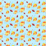 Ladybirds and leaves seamless pattern Stock Photos