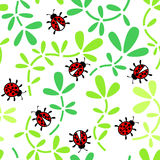 Ladybirds ornament Stock Photography