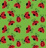 Ladybirds pattern Royalty Free Stock Photos
