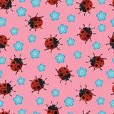 Ladybirds pattern-02 Stock Photo