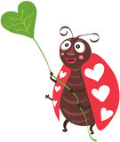 ladybug γλυκό Στοκ Φωτογραφίες