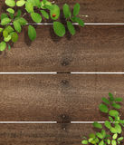 Ladybug στο δάσος leaf.old στοκ φωτογραφίες με δικαίωμα ελεύθερης χρήσης