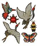 Ladybug, бабочка, жук, кран, заплаты вышивки колибри Стоковые Фото