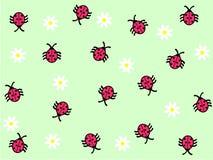ladybug маргаритки предпосылки Стоковые Фотографии RF
