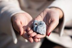 Ladybug на камне Стоковое Изображение