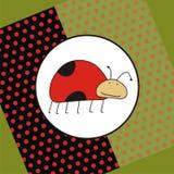ladybug приветствию карточки смешной иллюстрация вектора