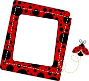 ladybug рамки Стоковые Фото
