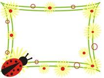 ladybug рамки Иллюстрация вектора