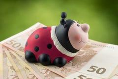 Ladybug сидя на 50 банкнотах евро Стоковая Фотография RF
