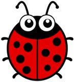 Ladybug с большими глазами Стоковая Фотография RF