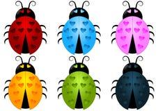 Ladybug установленный с пятнами сердца Стоковое фото RF