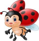 ladybug шаржа смешной Стоковая Фотография