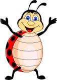 ladybug шаржа Стоковое Изображение RF