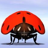 Ladybug #05 Royalty Free Stock Photos