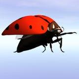 Ladybug #09 Royalty Free Stock Images