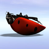 Ladybug #1 Stock Photos