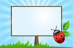 Ladybug. Vector spring background with ladybug. Framed space for copy/text vector illustration