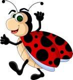 Αστεία κινούμενα σχέδια Ladybug Στοκ Φωτογραφία