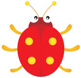 Ladybug stock illustration