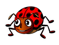 смешной ladybug Стоковые Изображения