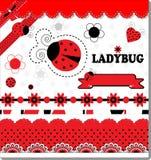 Συλλογή Ladybug Στοκ φωτογραφίες με δικαίωμα ελεύθερης χρήσης