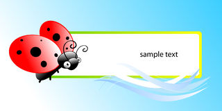 Ladybug. Vector ladybug frame with copy-space. See others in my portfolio Royalty Free Stock Image