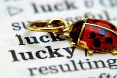 Ladybug afortunado Fotos de archivo