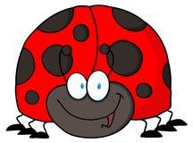 Ladybug amichevole Immagine Stock