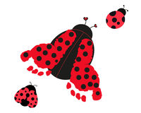 Ladybug with baby foot prints vector Royalty Free Stock Images