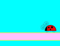 Ladybug Background Stock Photos
