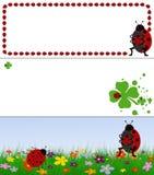 Ladybug banners Stock Photos