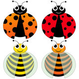 Ladybug and bee Stock Photos