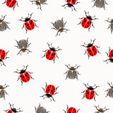 Ladybug, beetles in peas and striped  seamless pattern, insects vector background. For fabric design, wallpaper Stock Photography