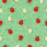 Ladybug, beetles in peas and striped  seamless pattern, insects vector background. For fabric design, wallpaper Royalty Free Stock Images