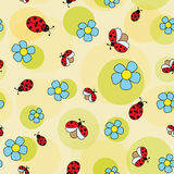 Ladybug on camomile. Daisy flowers with ladybugs on a green background.  seamless pattern Royalty Free Stock Photo