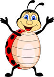 Ladybug cartoon Royalty Free Stock Image
