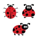 Ladybug cartoon art vector illustration Royalty Free Stock Photo
