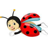 Ladybug cartoon Stock Photo