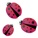 Ladybug cartoon vector Royalty Free Stock Photos