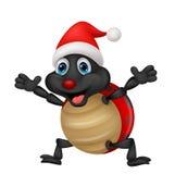Ladybug cartoon wearing red hat Royalty Free Stock Photos